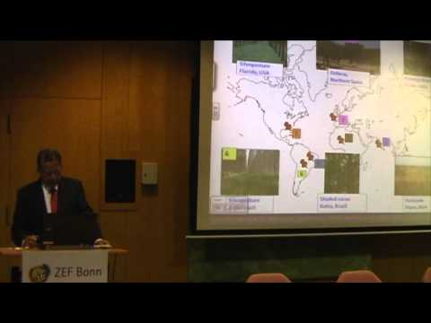 """Public Lecture on """"The Role of Agroforestry in Land Management in the Future"""" by Prof. P.K. Nair"""