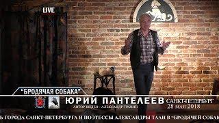 """Санкт-Петербург - День города. """"Бродячая собака"""".  Рассказывает Юрий Пантелеев"""