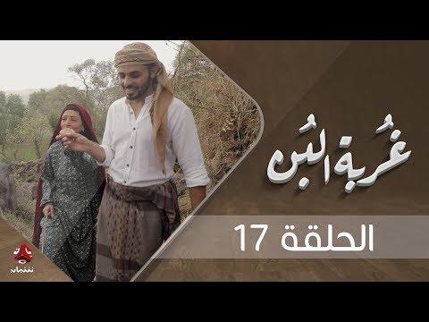 غربة البن | الحلقة  17  | محمد قحطان - صلاح الوافي - عمار العزكي - سالي حماده - شروق | يمن شباب