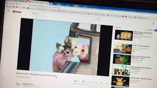 Baby McDonald 2004 Cartoon Network Bumper