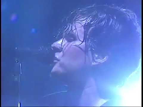 blink-182 - Reckless Abandon BEST LIVE PERFORMANCE