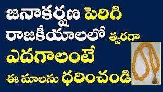 జనాకర్షణ పెరిగి రాజకీయాలలో త్వరగా ఎదగాలంటే ఈ మాలను ధరించండి|How to win politics in telugu|Remedies