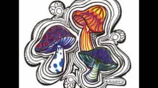 Fungus Funk - Cosmic Race