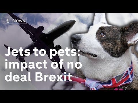 Brexit: Consequences of No Deal - from jets to pets