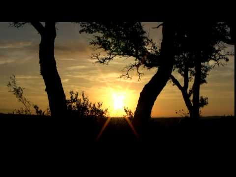 Kree Harrison ~ See you again ~ Lyrics
