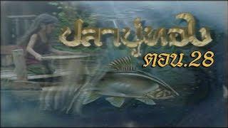 ปลาบู่ทอง ตอน 28
