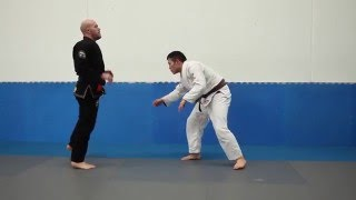 The Art Of Learning Jiu Jitsu - Vol 2
