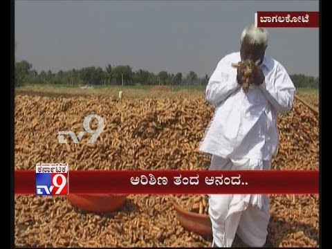 Amid Drought, This Farmer Finds Success Growing Turmeric in Bagalkot