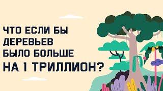 Edu: Что если бы деревьев было больше на 1 триллион?