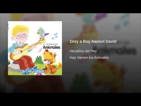 Only a Boy Named David