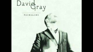 the dotted line- david gray
