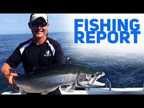 Fantastic Fishing In Holland, MI - Fishing Report
