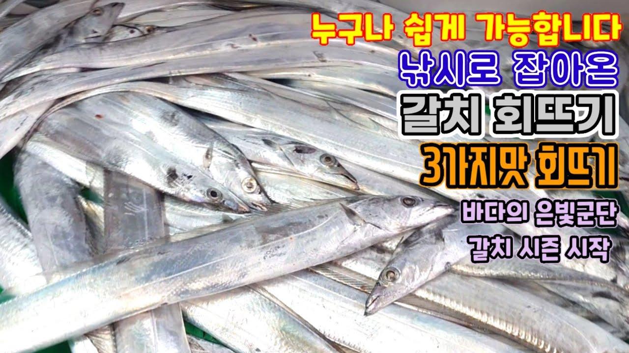 누구나 갈치 회뜨기 가능 , 갈치 회 ,  cutlassfish Sashimi