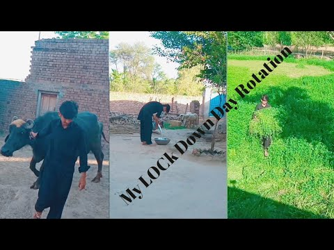 My Quarantine Day Routine||A Day In My Life In Quarantine Vlog | Getting Work Done,By Zaheer Hassan