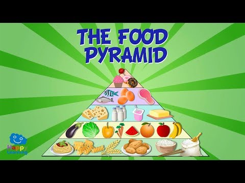 THE FOOD PYRAMID   Educational Video for Kids.