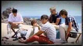 Watch One Direction Im Yours video