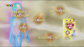 VTV3 Cẩm Nang Vàng Cho Sức Khỏe - Mama Sữa Non Colos Multi
