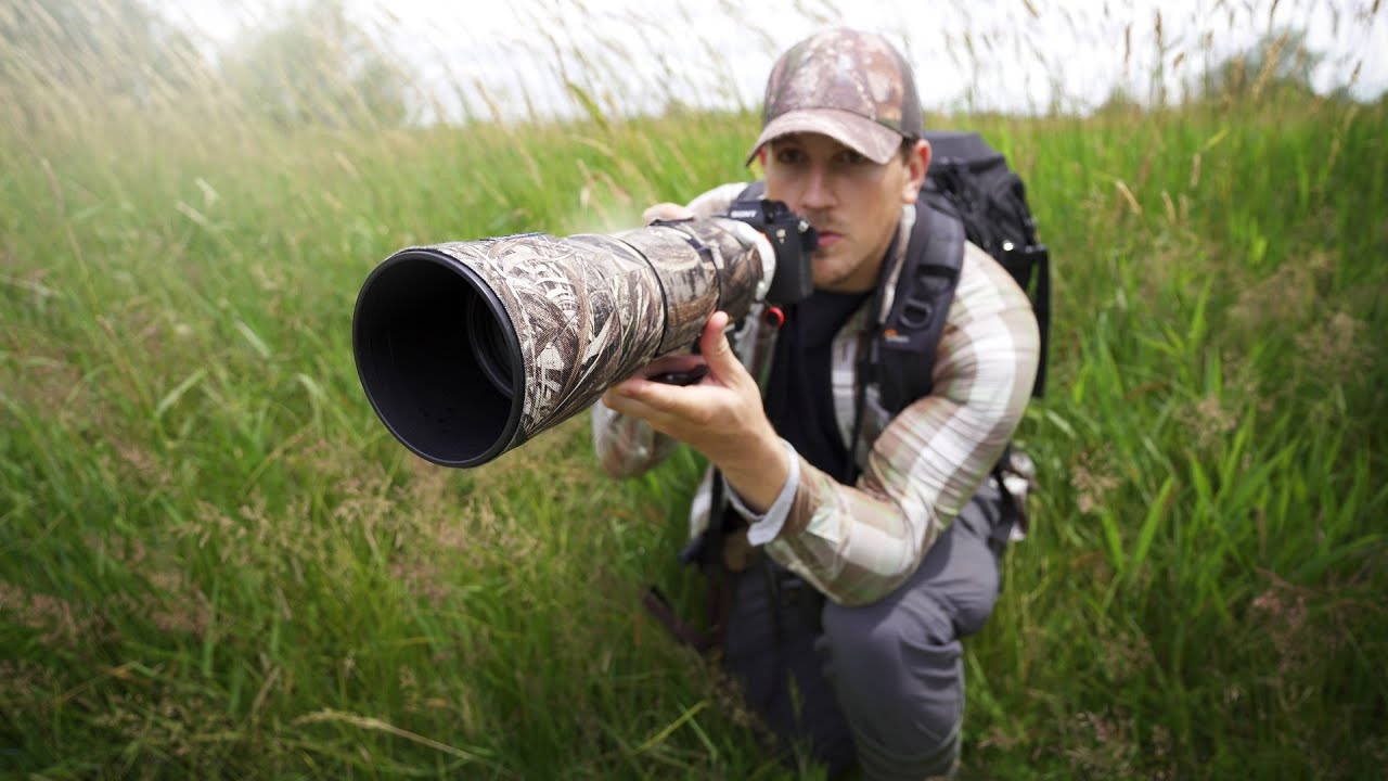 BIRD Photography | A Day at the Marsh | a1 + 200-600