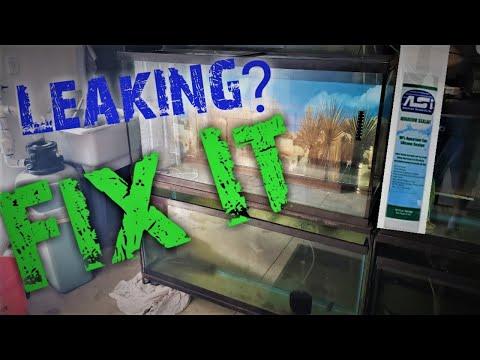 Easily Reseal A Leaking Aquarium
