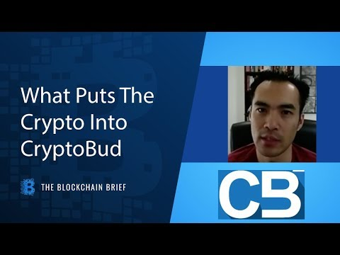 The Blockchain Brief: What Puts The Crypto In CryptoBud