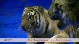 Дрессировщик тигров Михаил Багдасаров госпитализирован в Москве