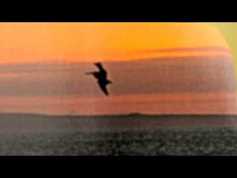 With You I'm Born Again - Billy Preston And Syreeta