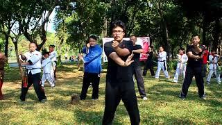 ALIANSI WING CHUN INDONESIA (AWCI)