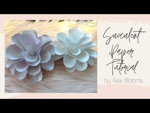 SUCCULENT PLANT PAPER TUTORIAL (THEY'RE SO CUTE!)