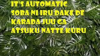 AUTOMATIC   UTADA HIKARU KARAOKE