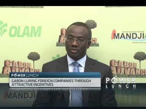 Gabon Oil Company Pumps More Oil