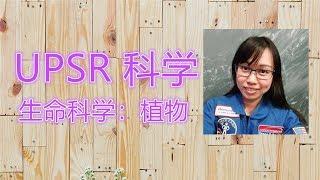 Publication Date: 2018-08-10   Video Title: 2018 UPSR 生命科学:植物和科学技巧:观察