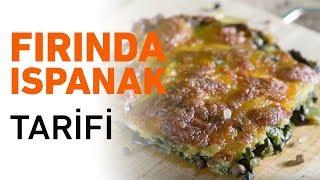 Fırında Ispanak Nasıl Yapılır?   Fırında Ispanak Yemeği Tarifi