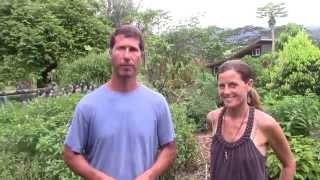 Doug & Genna's story of Moving to Kauai and Starting the Farm