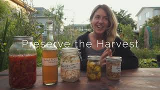 Preserve the Harvest - Fermentation Tips To Get You Started!