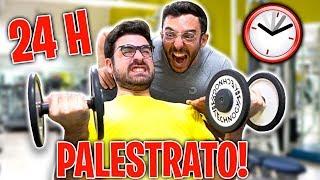 24 ORE DA PALESTRATO! w/GiampyTek *FINITO MALE*