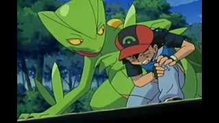 Pokémon - Sceptile - Never Too Late (AMV)