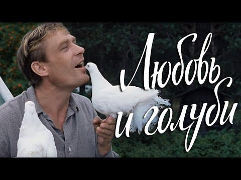 Любовь и голуби (комедия, реж. Владимир Меньшов, 1984 г.) - Видео онлайн
