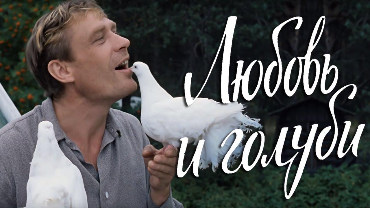 Любовь и голуби (комедия, реж. Владимир Меньшов, 1984 г.)
