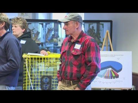 Aquaculture leases in Maine