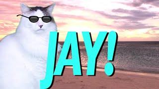 HAPPY BIRTHDAY JAY! - EPIC CAT Happy Birthday Song