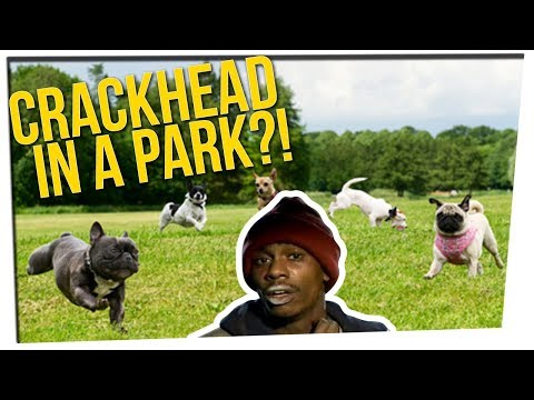 Off The Record: Joes Dog Park Story & a Beaws Argument  ft. DavidSoComedy