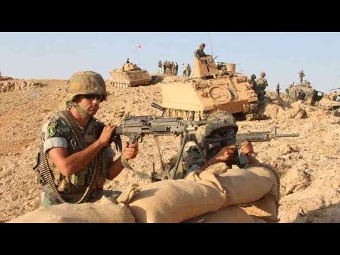 Lebanese army declares offensive against ISIL