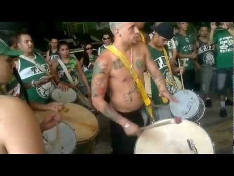 TUP- Aquecimento antes do Jogo Palmeiras x Gambas 16/09/2012