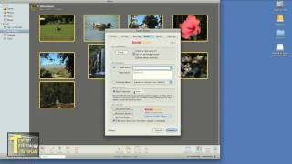 This tutorial guides you through the process of exporting your phot...