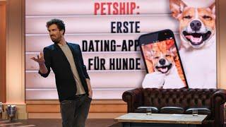 Dating-App für Hunde und Jesus-Sneaker