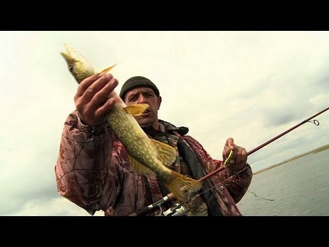 Astrakhan: Fishing on the Volga - life