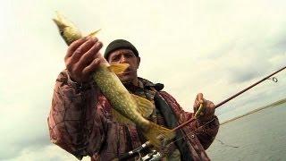 Astrakhan: Fishing on the Volga - life.