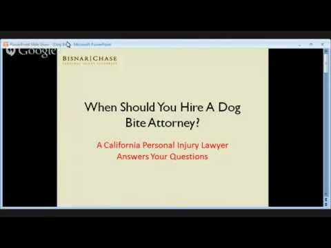 Los Angeles Dog Bite Attorney - When To Hire A California Dog Bite Lawyer