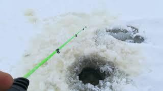 Рыбалка на Кубенском озере 20 12 20