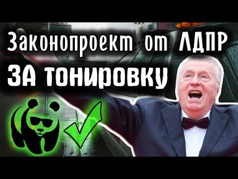Тонировка 2019. Депутаты отменяют штраф за тонировку.